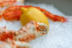 Crab claws in a box. Fresh frozen lobster on ice with lemon at market Stock Photography