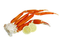 Crab Cluster Royalty Free Stock Image