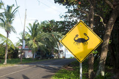 Crab crossing street sign Corn Island Nicaragua Royalty Free Stock Images