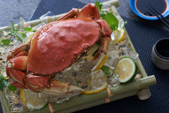 Crab on cucumber and lemon Stock Photography