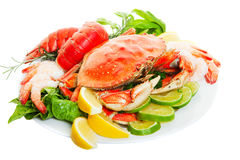 Crab dinner Royalty Free Stock Image
