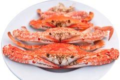 Crab on dish Stock Photos