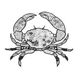 Crab doodle. Illustration Crab was created in doodling style in black and white colors. Painted image is isolated on white background. It can be used for stock illustration