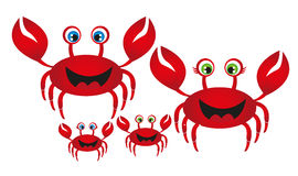 Crab family Stock Photo