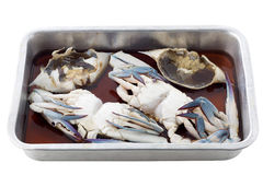 Crab in fish sauce prepare for cooking Royalty Free Stock Photos