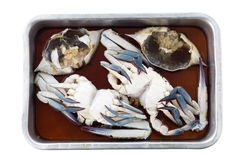 Crab in fish sauce prepare for cooking Stock Photos