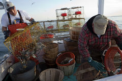 Crab fishermen Royalty Free Stock Photo