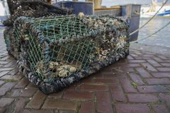A crab fishing cage filled with left over crab on the harbor docks stock images