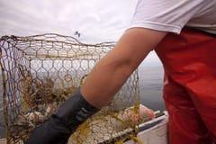 Crab fishing cage Royalty Free Stock Photos