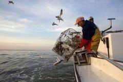 Crab fishing Royalty Free Stock Images