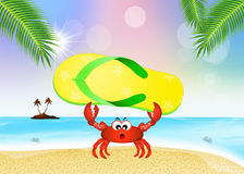 Crab with flip flop Stock Photography