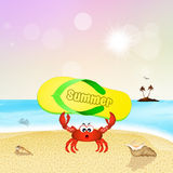 Crab with flip flop Royalty Free Stock Photography