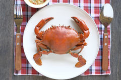 Crab food with sauce spicy Royalty Free Stock Photography