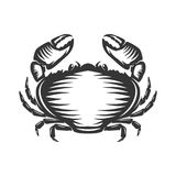Crab icon isolated on white background. Stock Images