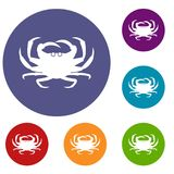 Crab icons set. In flat circle reb, blue and green color for web Royalty Free Stock Photo