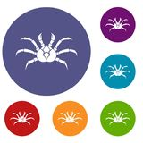 Crab icons set. In flat circle red, blue and green color for web Royalty Free Stock Image