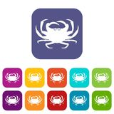 Crab icons set. Vector illustration in flat style In colors red, blue, green and other Stock Photography