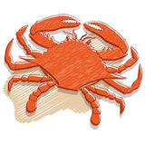 Crab vector. Vector illustration of a red crab isolated on white Royalty Free Stock Photos