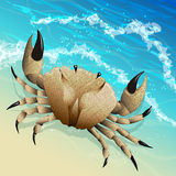The crab. Illustration with crab on the sea shore drawn in realistic style Stock Photo