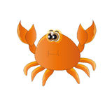 Crab. The image of the inhabitant of the sea - crab on white background Stock Photo