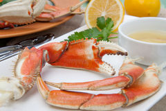 Crab Legs Appetizer Royalty Free Stock Photography