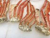 Crab legs on ice Royalty Free Stock Image