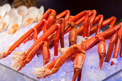 Crab legs on the ice Stock Photography