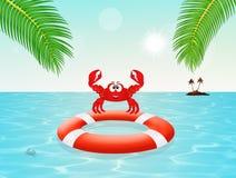 Crab on lifebelt Stock Images