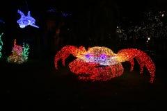 Crab light Royalty Free Stock Photos