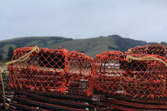 Crab and lobster traps on the pier Stock Images