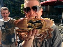 Crab Man. Head chef with crab royalty free stock photography