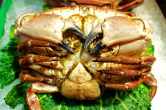 Crab on the market in Barcelona Royalty Free Stock Photography