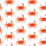 Crab pattern. Vector seamless pattern with crabs on isolated background Royalty Free Stock Image