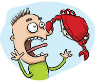 Crab Pinch. A cartoon crab pinches a man on the nose Royalty Free Stock Image