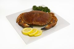 Crab on plate Royalty Free Stock Photos