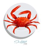 Crab on the plate in cartoon style. Seafood product design. Inhabitant wildlife of underwater world. Edible sea food. Crab on ice cubes in cartoon style. Seafood Stock Photography