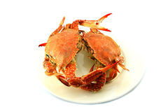 Crab on  plate Royalty Free Stock Images