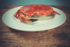 Crab on plate Royalty Free Stock Photo