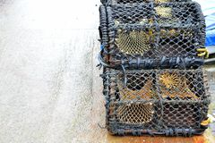 crab pots Royalty Free Stock Photography