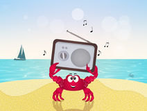 Crab with radio in summer. Illustration of crab with radio in summer Royalty Free Stock Images