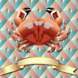 Crab realistic background and Gold ribbon. Crab realistic Triangle Symmetry Vintage background Sea Food and Gold ribbon Stock Photography