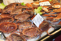 Crab at the Rialto Stock Images