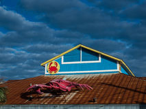 Crab On A Roof Royalty Free Stock Image