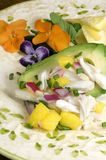Crab Salad with Mango. A spring plate of delicious avocado stuffed with crab-meat, mango, red onions, and chives surrounded by beautiful pansy flowers Stock Photography
