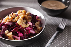 Crab salad with red cabbage ang garlic souce Royalty Free Stock Photo