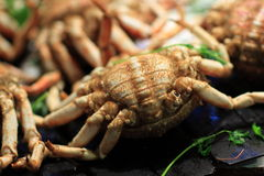 The crab for sale Royalty Free Stock Photos