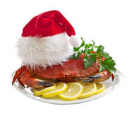 Crab in Santa Claus hat Royalty Free Stock Photography