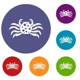 Crab sea animal icons set. In flat circle red, blue and green color for web Royalty Free Stock Image