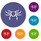 Crab sea animal icons set. In flat circle red, blue and green color for web Stock Photo