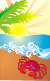 Crab on sea coast, vector illustration. Crab and Sunrise at tropical coast, vector illustration Stock Photo